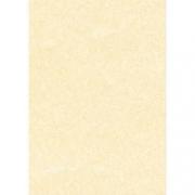 CARTA A TEMA PERGAMENA CHANPAGNE STAMPA LASER E INKJET DECADRY CORPORATE A3 165G 25FF
